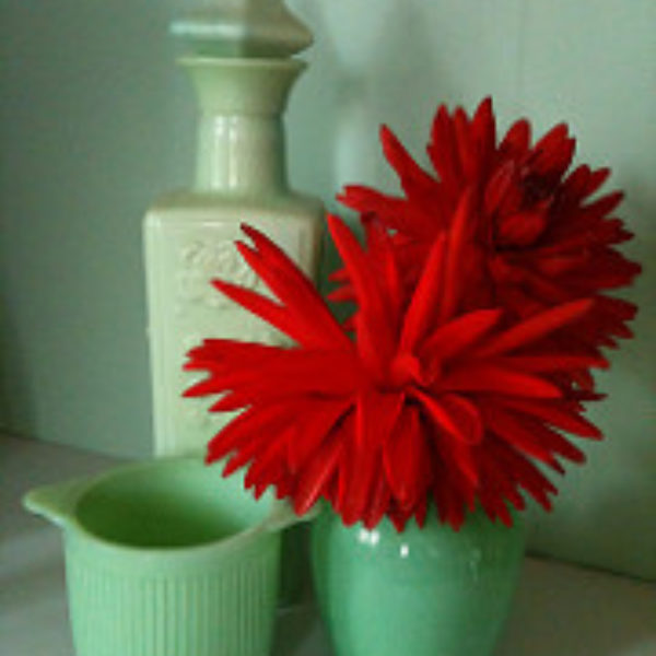 Jadite and Red dahlias