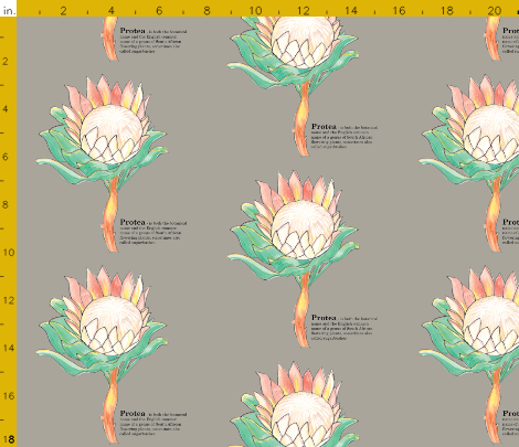 Protea-Sugarbush-Design