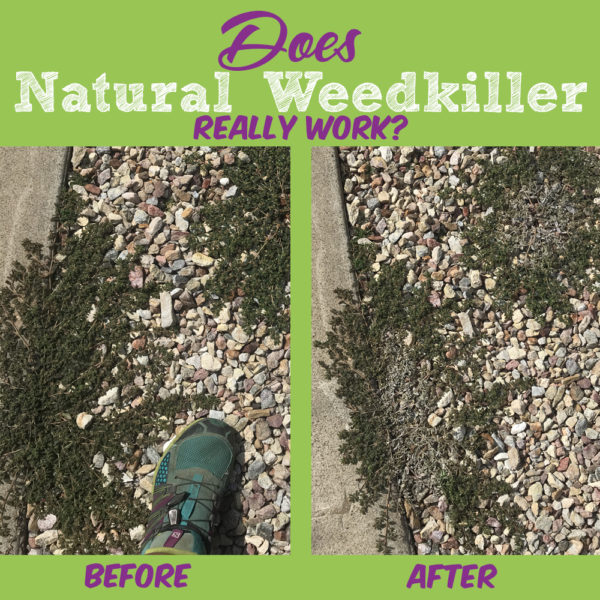 Does Natural Weed Killer Work?